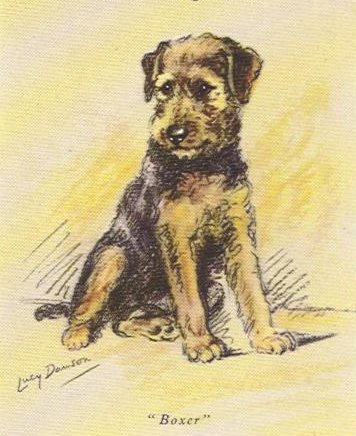 Airedale Terrier Card - Lucy Dawson