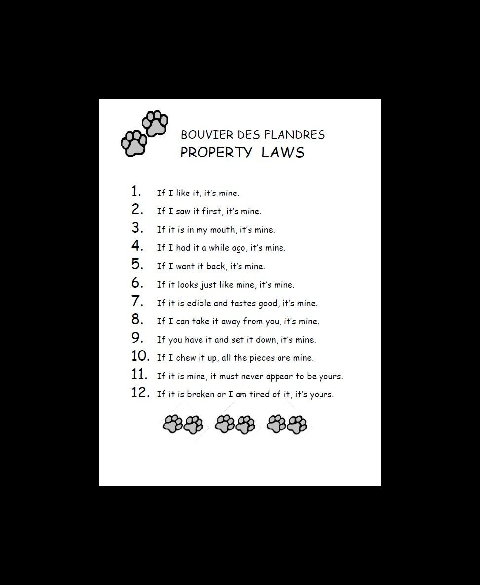 Bouvier Property Laws Dog Print