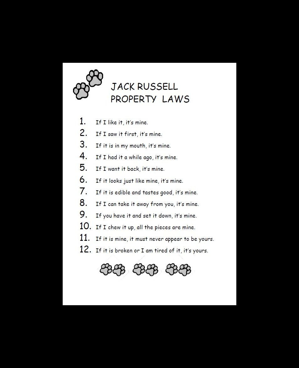 Jack Russell Terrier Property Laws Dog Print