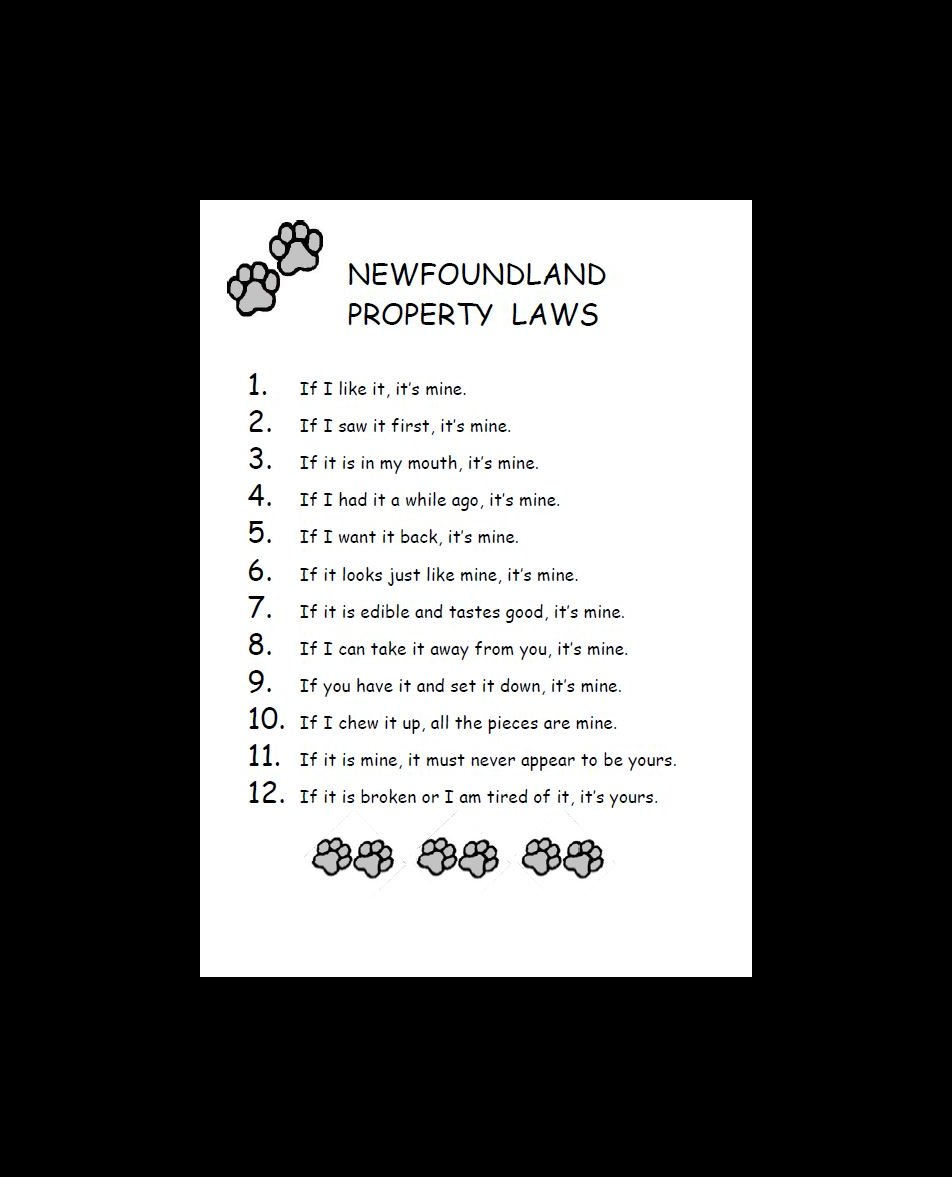 Newfoundland Property Laws Dog Print
