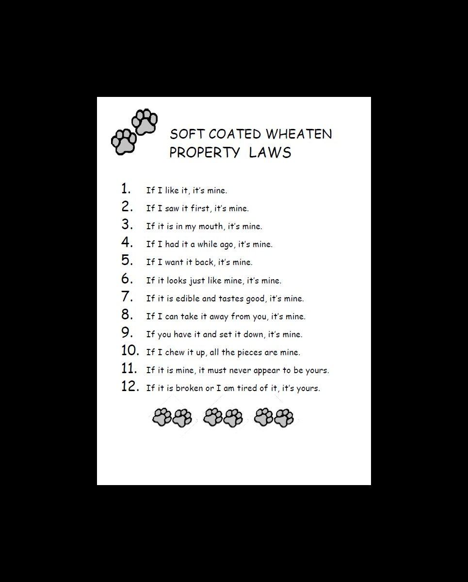 Soft Coated Wheaten Property Laws Dog Print