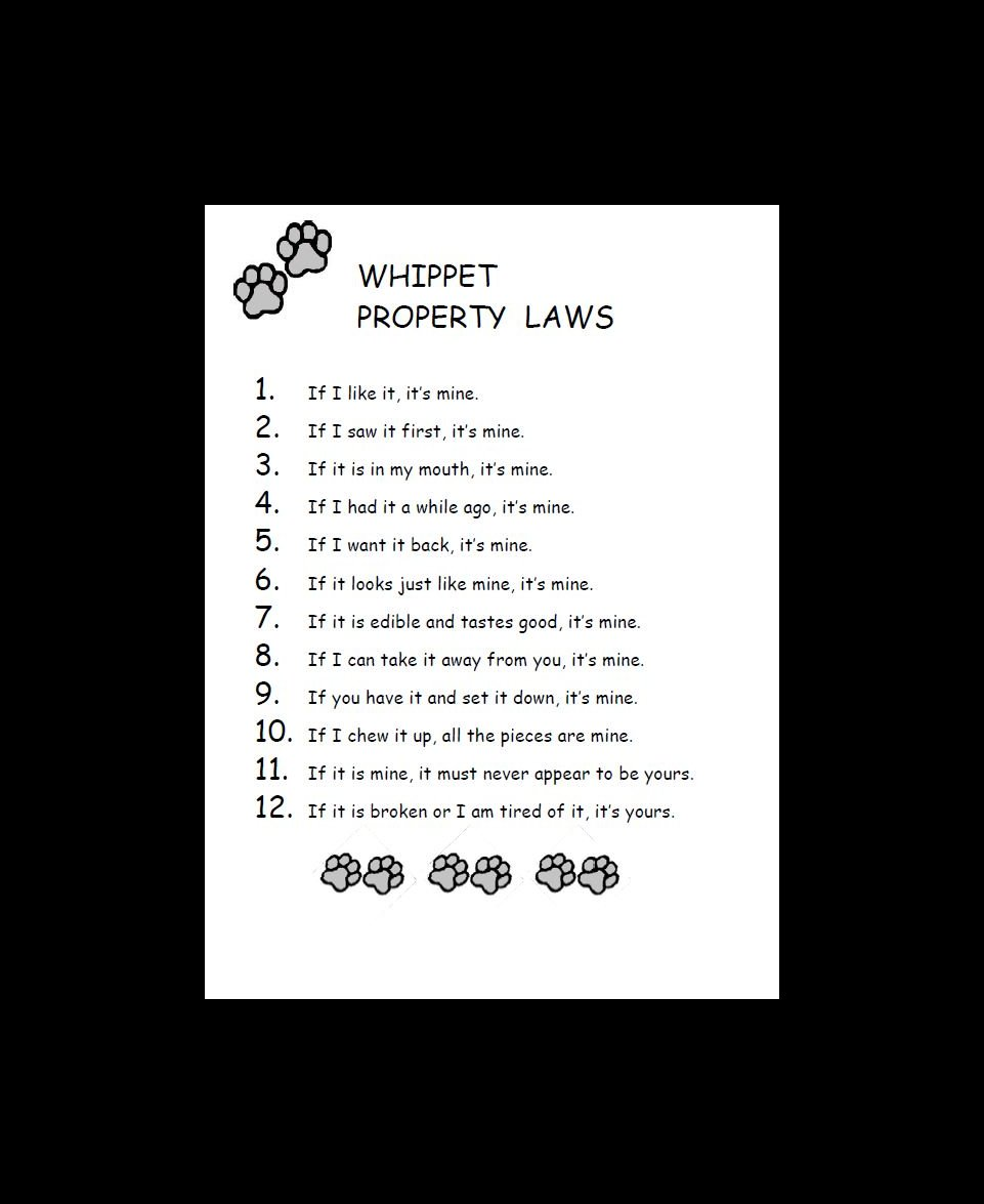 Whippet Property Laws Dog Print