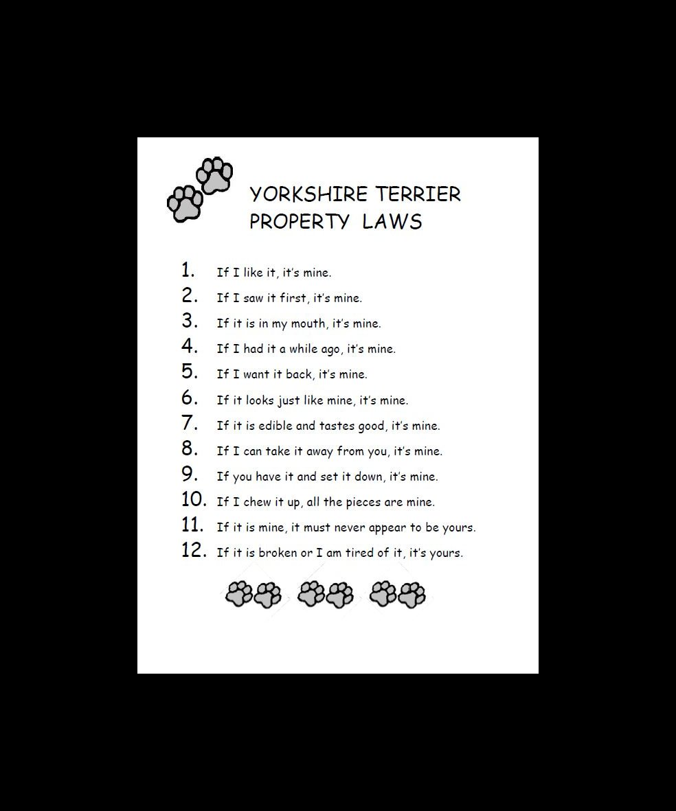 Yorkshire Terrier Property Laws Dog Print
