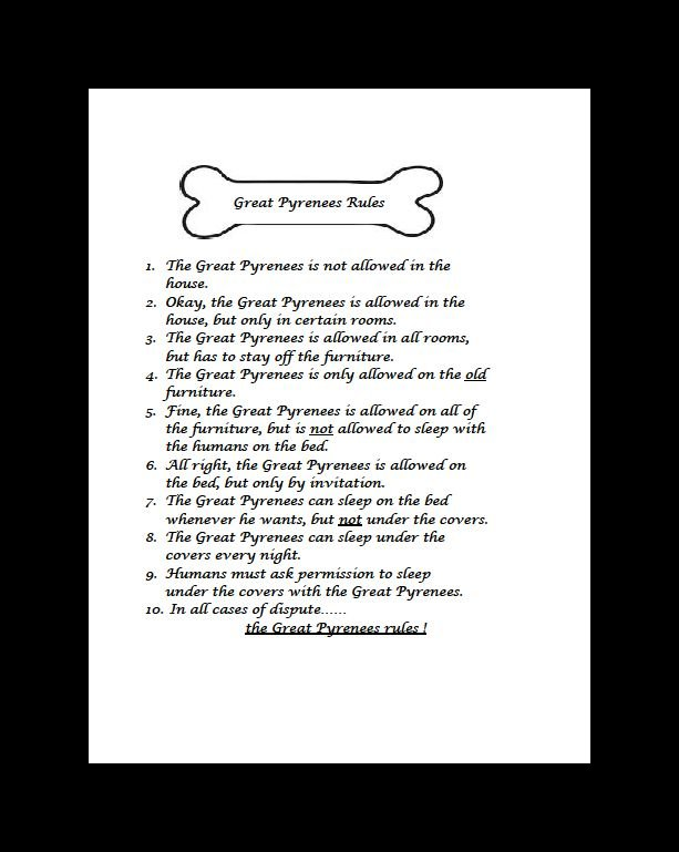Great Pyrenees Rules Dog Print